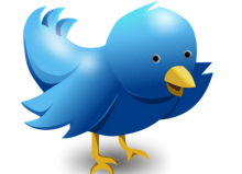 blue twitter bird sending a message