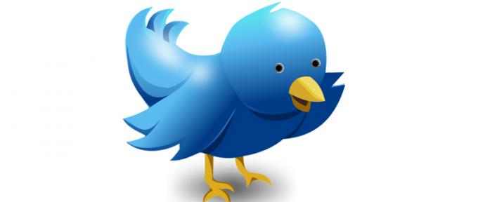 blue twitter bird sending a message
