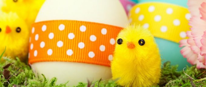 soft toy chicks with easter eggs