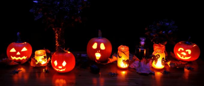 Pumpkins lined up for Halloween